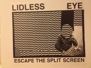 Lidless Eye: Escape The Split Screen
