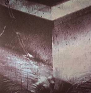 Burnt Skull: Sewer Birth LP