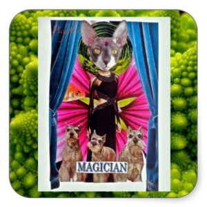 Picaflor: Magician