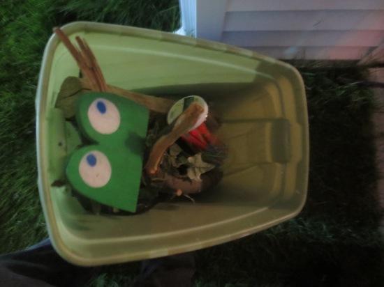 Frog eyes in a bucket