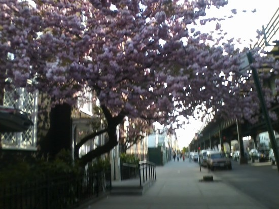 walking through Astoria