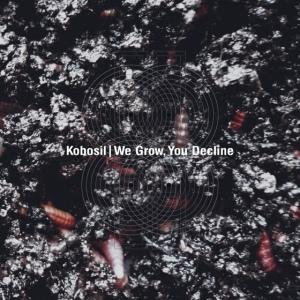 Kobosil: We Grow, You Decline