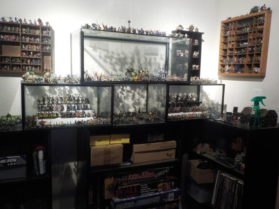 D&D miniatures collection at Catdog's friend's house